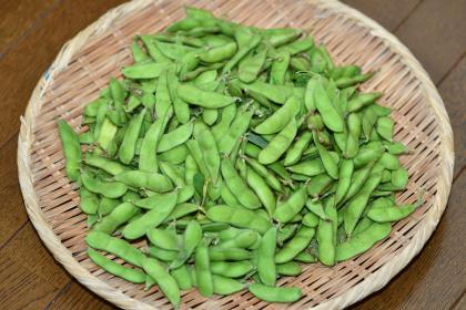 2016年7月の枝豆